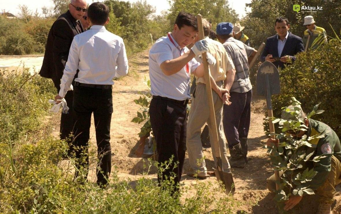 В Актау открыли аллею посмертных доноров Казахстана (Видео), фото-4