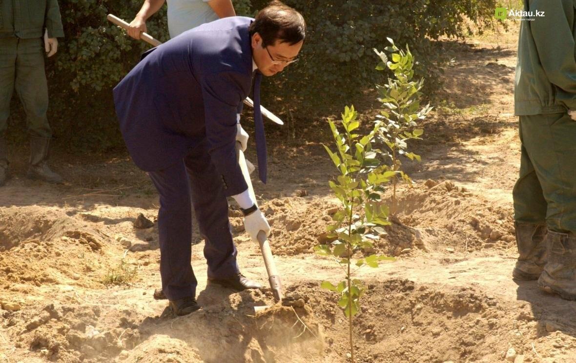 В Актау открыли аллею посмертных доноров Казахстана (Видео), фото-6