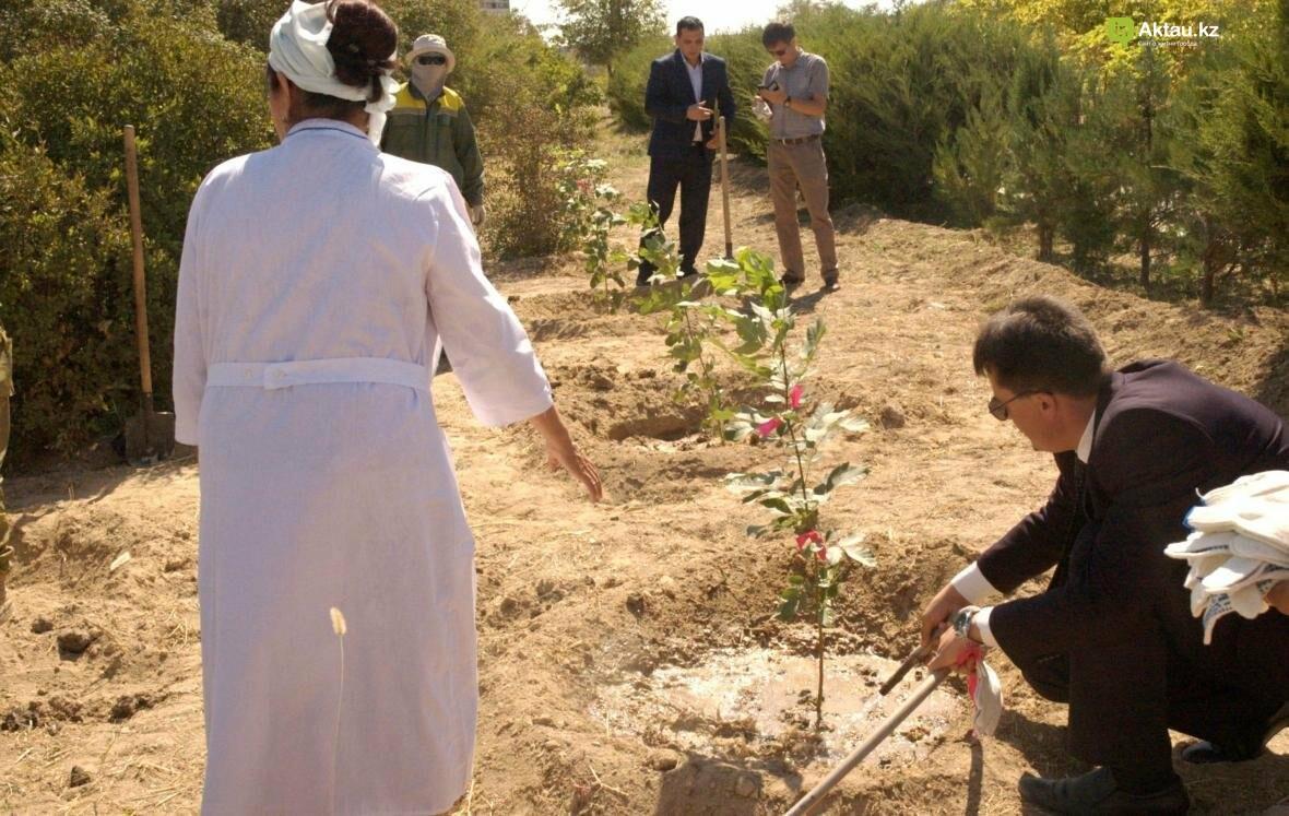 В Актау открыли аллею посмертных доноров Казахстана (Видео), фото-9