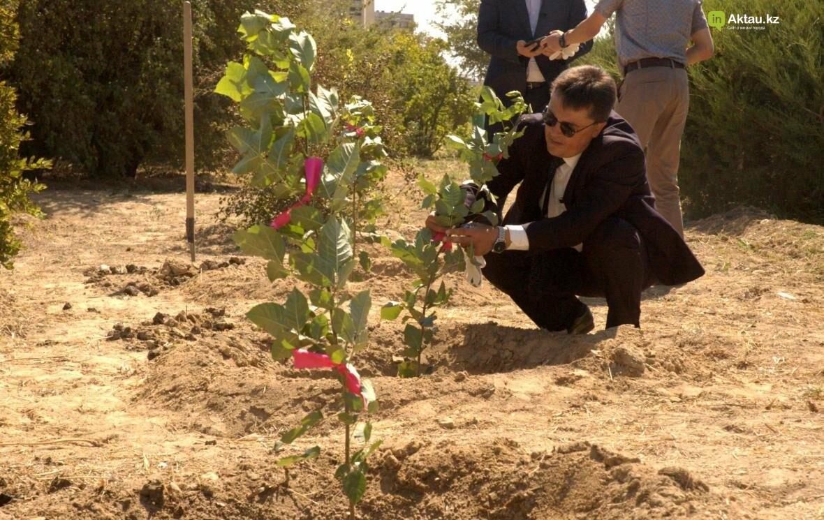 В Актау открыли аллею посмертных доноров Казахстана (Видео), фото-10