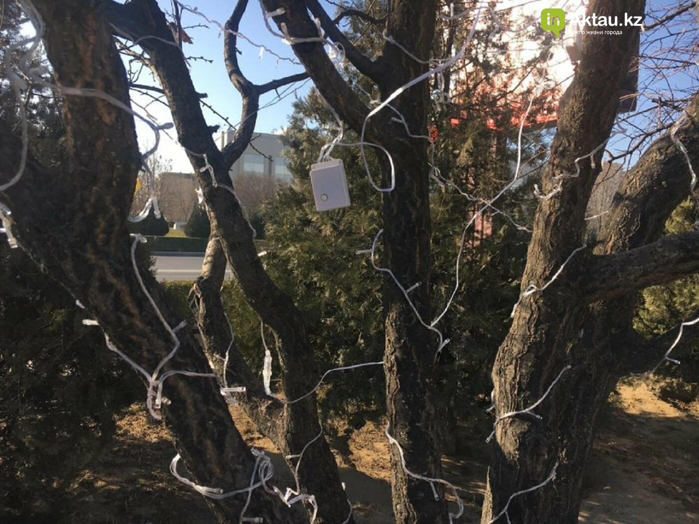 В Актау началась подготовка города к Новому году, фото-1
