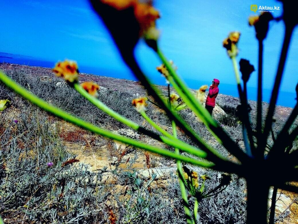 Упавшая земля (ФОТО), фото-28