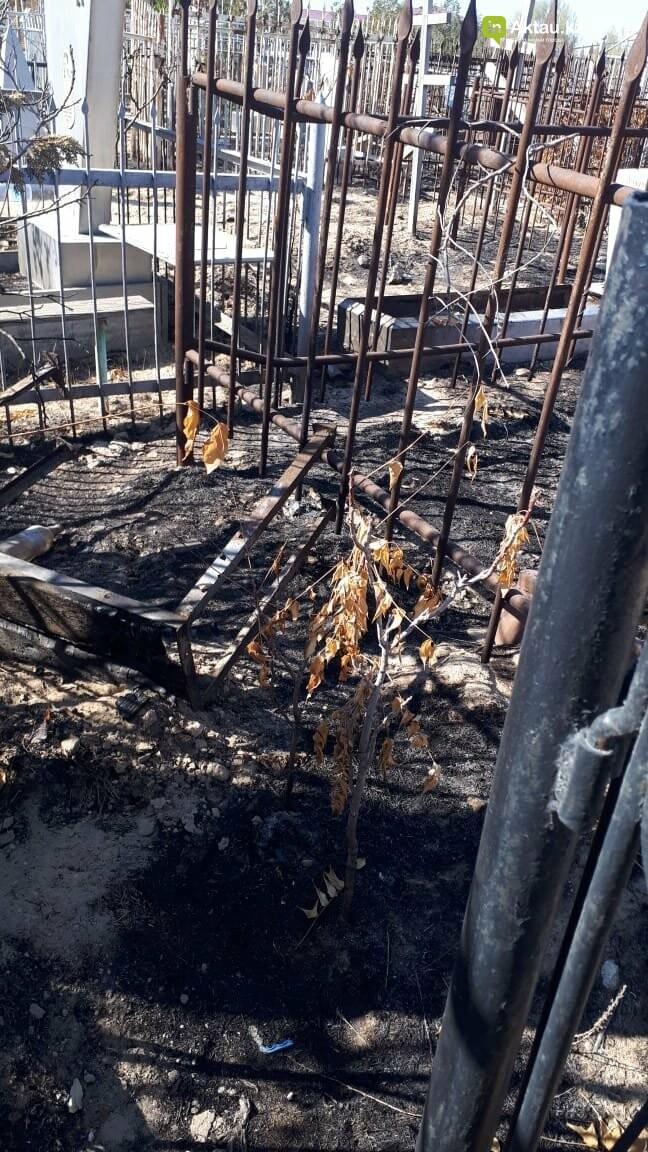 Превратили в свалку: жители Актау пожаловались на состояние христианского кладбища, фото-3