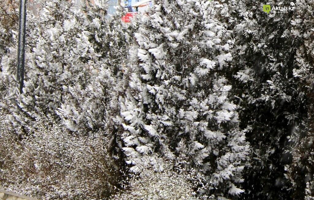 Первый снег в Актау в новом году (ФОТОПОСТ), фото-6