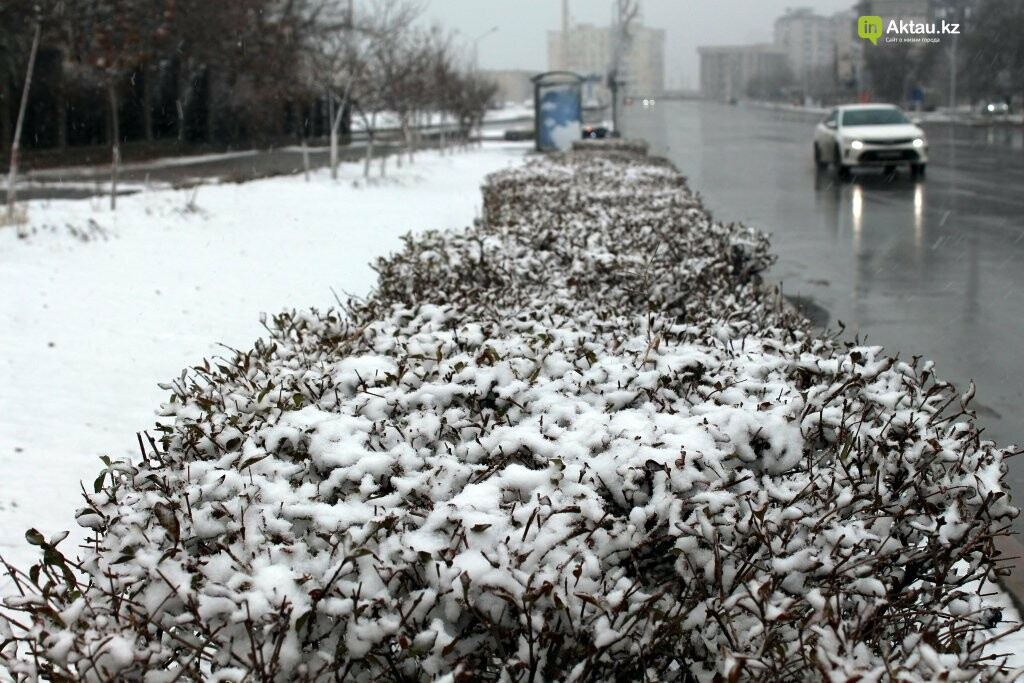 Первый снег в Актау в новом году (ФОТОПОСТ), фото-10