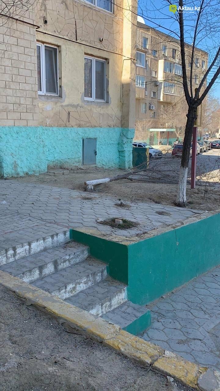 Жильцы 15 микрорайона Актау пожаловались на спиливание деревьев (ВИДЕО), фото-10