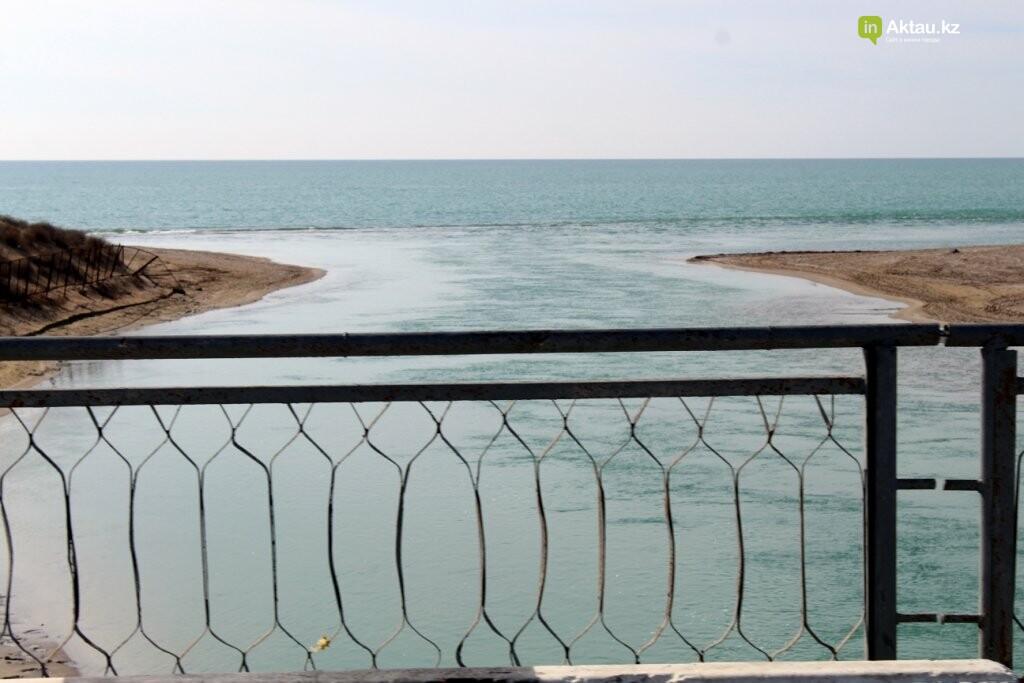 Дорога к морю: о состоянии дорог к побережью Каспия (ФОТО), фото-13