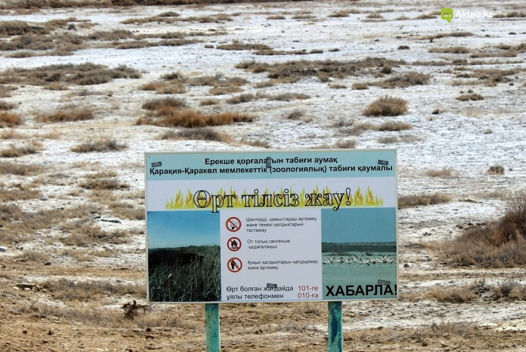 Дорога к морю: о состоянии дорог к побережью Каспия (ФОТО), фото-3