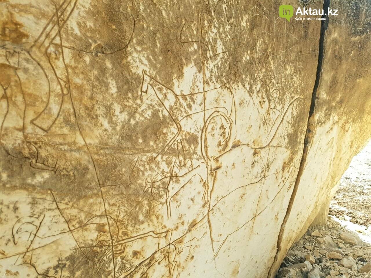 Долина замков – Айракты: Мангистау во всем своем величии (ФОТО), фото-5