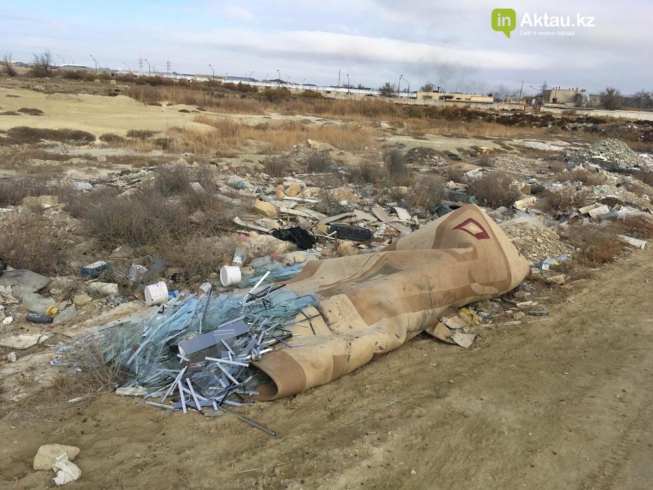В Актау и окрестностях обнаружили 194 стихийные свалки, фото-2
