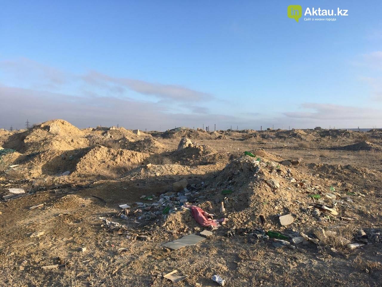 В Актау и окрестностях обнаружили 194 стихийные свалки, фото-1