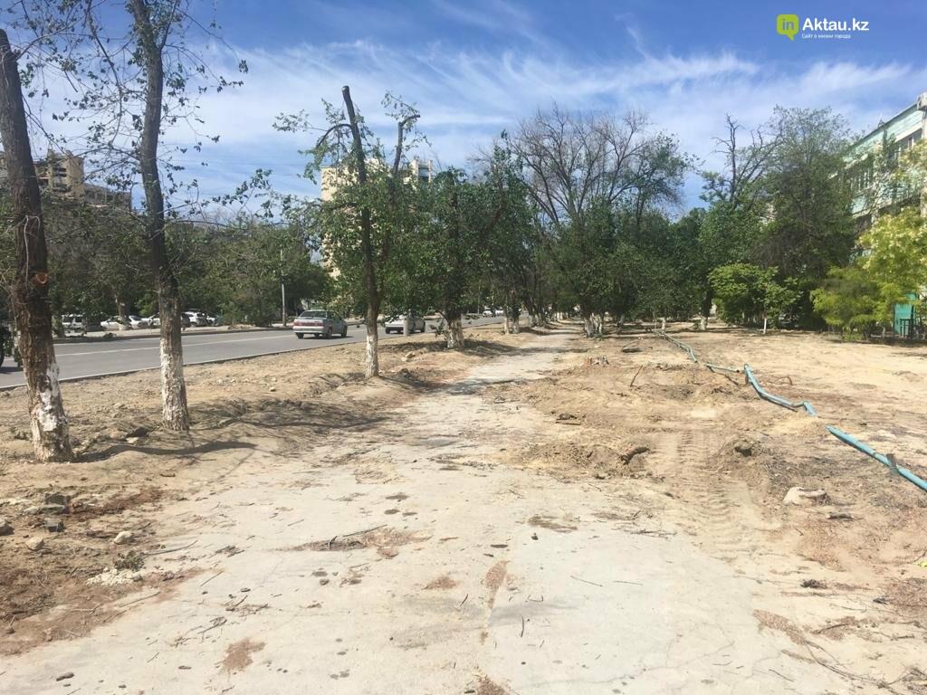 Самую зеленую аллею в Актау может заменить газон, фото-3