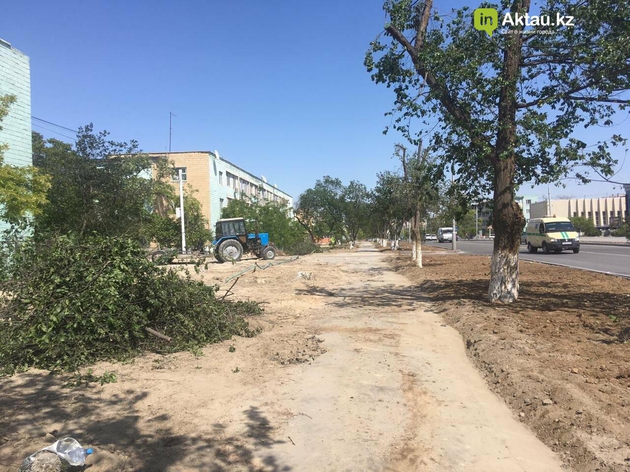 Самую зеленую аллею в Актау может заменить газон, фото-1