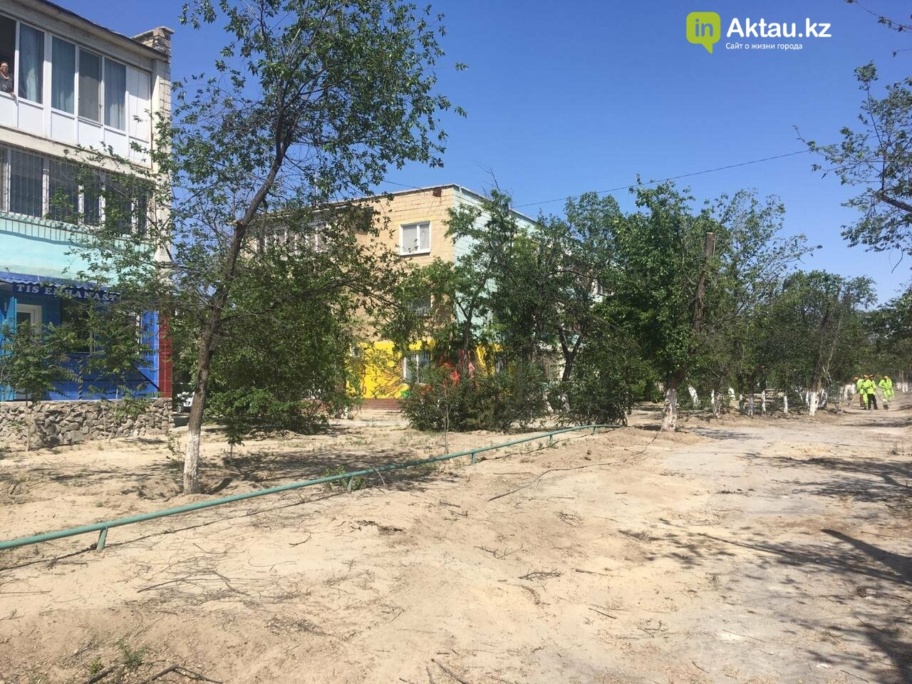 Самую зеленую аллею в Актау может заменить газон, фото-5