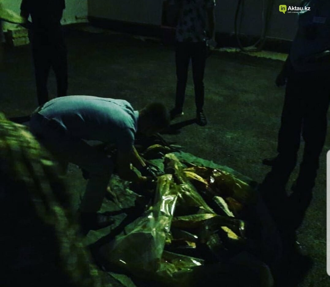 Полицейские Мангистау обнаружили автомобиль с 65 килограммами краснокнижной рыбы , фото-1