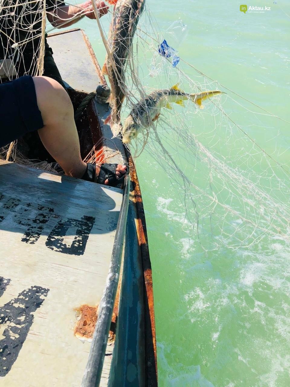 """В Мангистау рыбная инспекция обнаружила """"базу браконьеров"""", фото-1"""