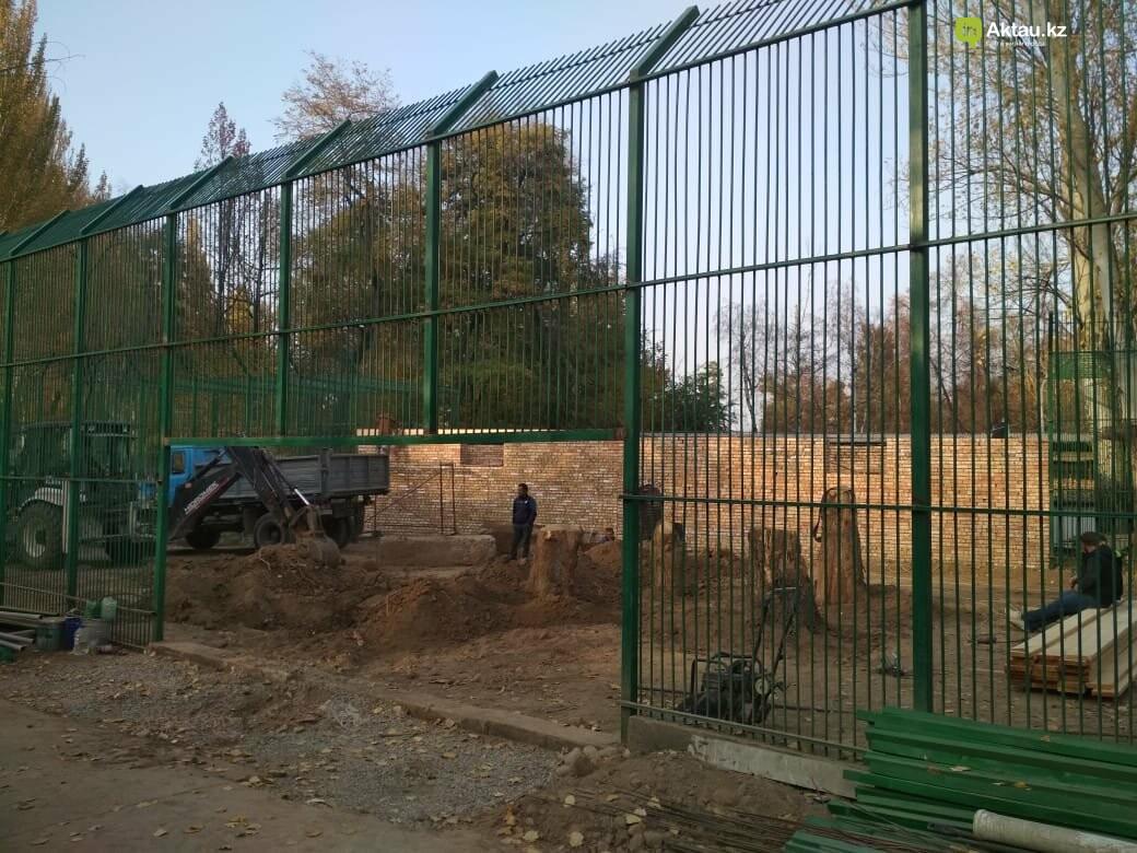 В Алматинском зоопарке завершают строительство вольера для львенка Симбы, фото-1