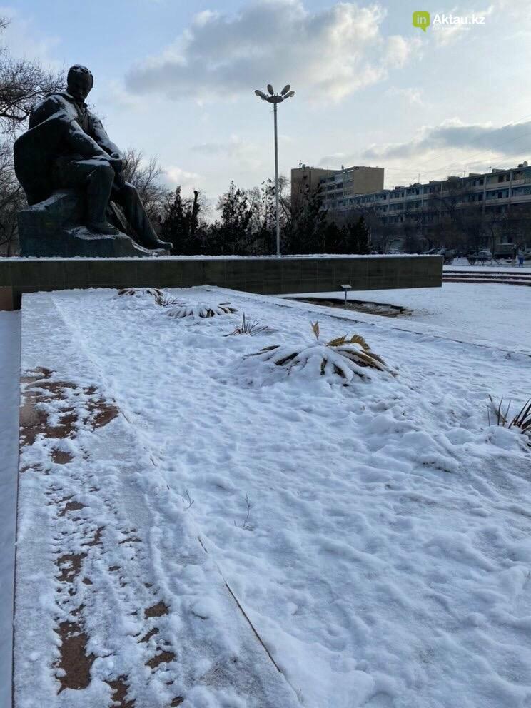 В Актау загубили высаженные у памятника Шевченко цикасы, фото-1