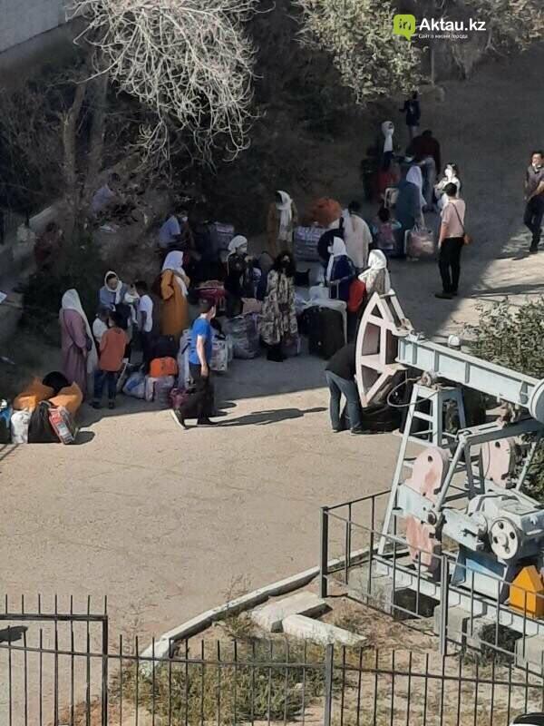 Прибывшие из Ирана в Мангистаускую область кандасы. Фото: очевидец
