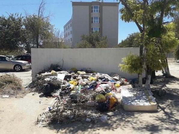 В Актау проблему переполненных мусорных баков связывают с нехваткой сжиженного газа, фото-2