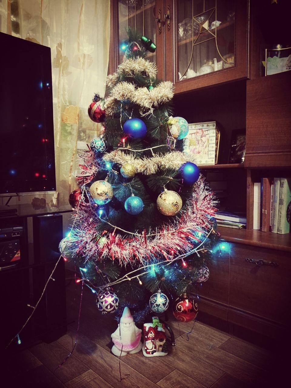 Красавицы Актау: как жители города украсили свои елки (ФОТО), фото-5