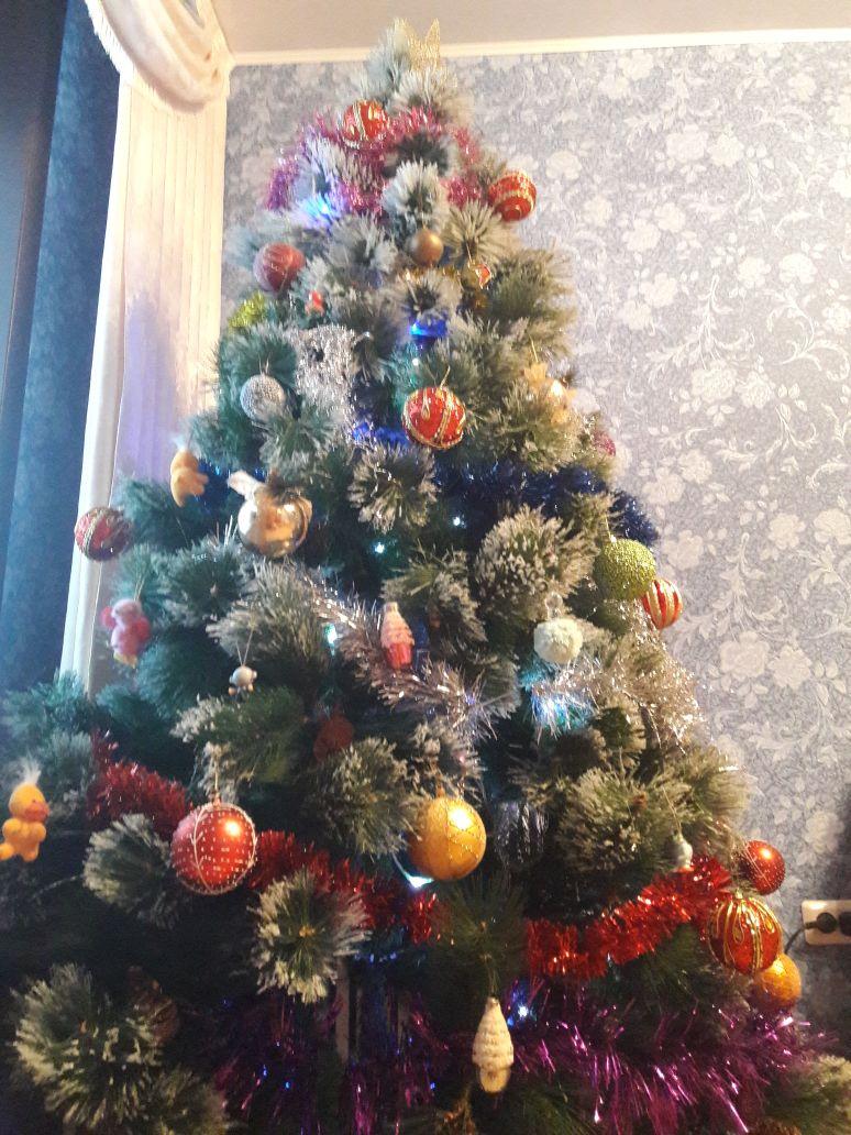 Красавицы Актау: как жители города украсили свои елки (ФОТО), фото-20