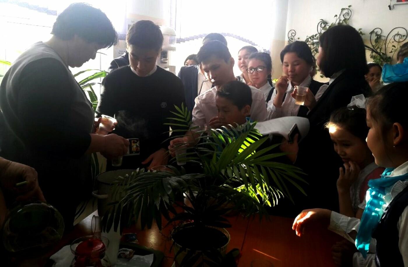 """""""Фитобар"""" открыли учителя в одной из школ Бейнеуского района, фото-1"""