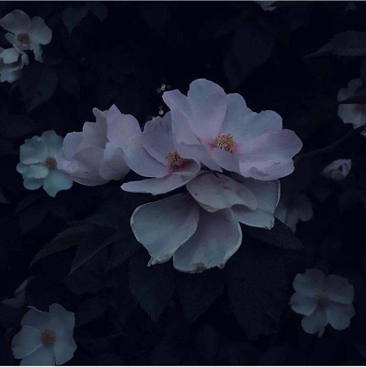 Актау глазами пользователей Instagram (ФОТО), фото-15