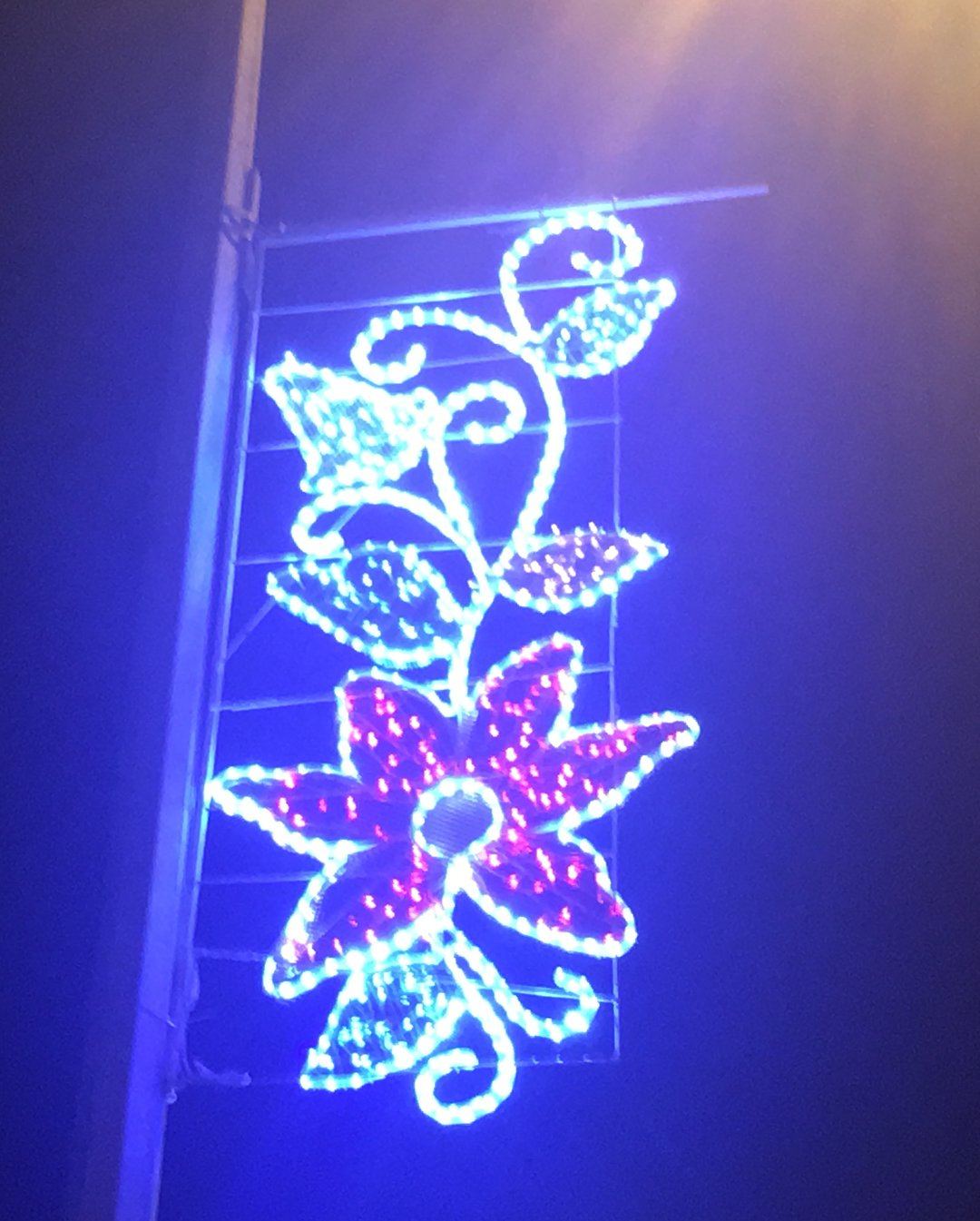 В Актау устанавливают декоративное освещение (ФОТО), фото-4