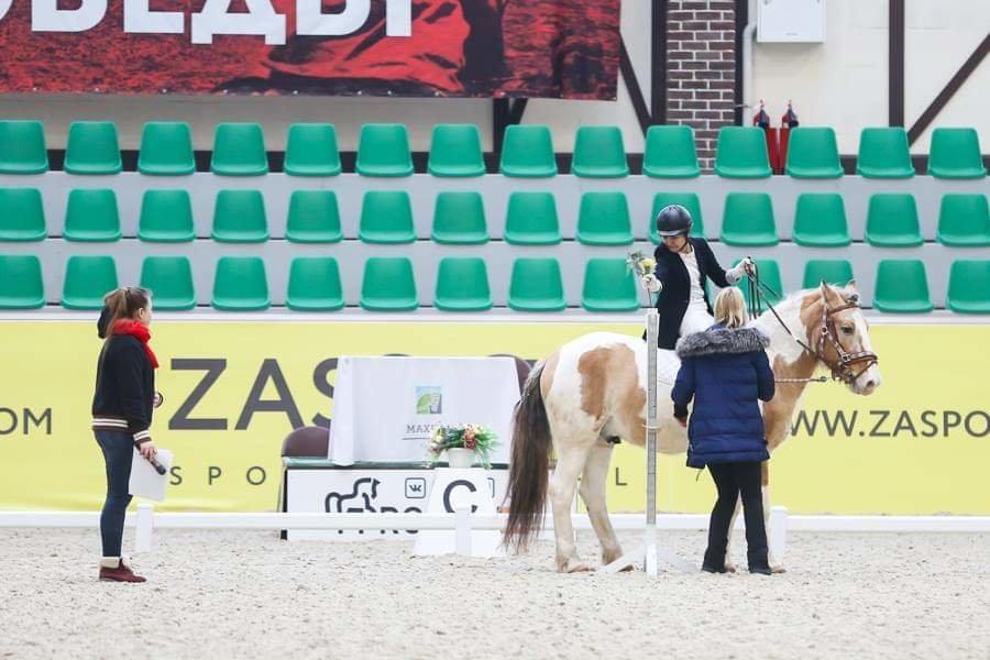 Три паралимпийца из Мангистау стали призерами турнира по конному спорту, фото-4
