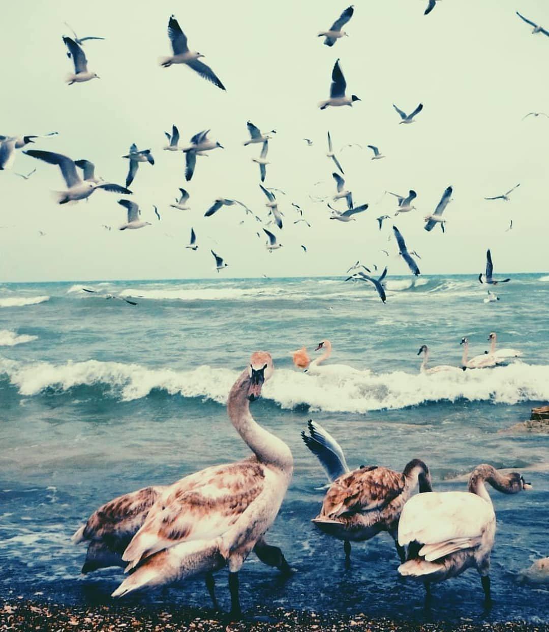 Актау глазами пользователей Instagram (ФОТО), фото-3