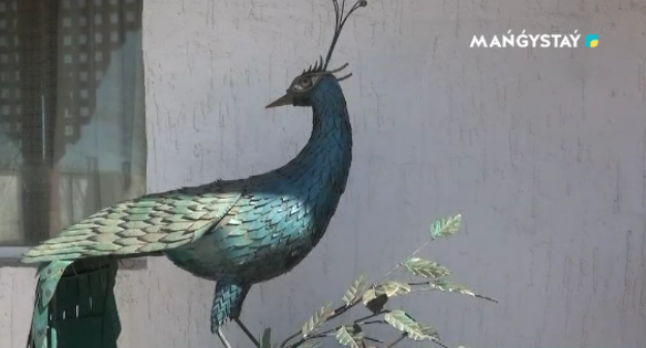 Житель Жанаозена создает шедевры из мусора, фото-2