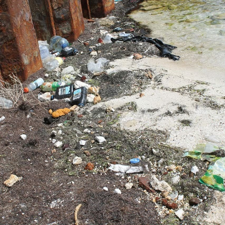 50 мешков мусора собрали волонтеры на пляже в Баутино, фото-2