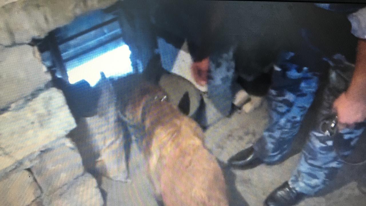 Наркодилера задержали в кафе в Актау, фото-1