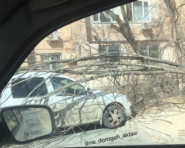 В Актау из-за сильного ветра на автомобиль рухнул навес (ВИДЕО), фото-1