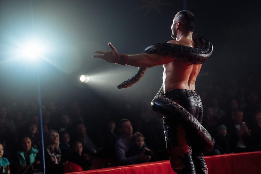 «Сложно, но мы справляемся»: как артисты Московского цирка, застрявшие в Актау, живут в условиях карантина (ФОТО и ВИДЕО), фото-8