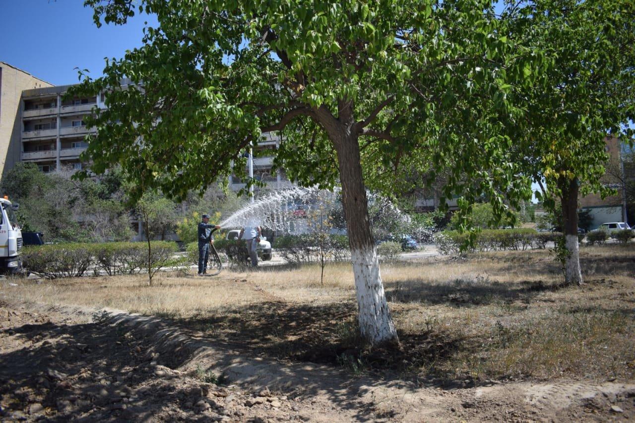 Сотрудники ДУИС полили деревья в Актау, фото-2