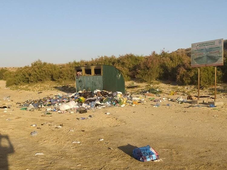 40 мешков мусора собрали молодые активисты на 43 километре, фото-1