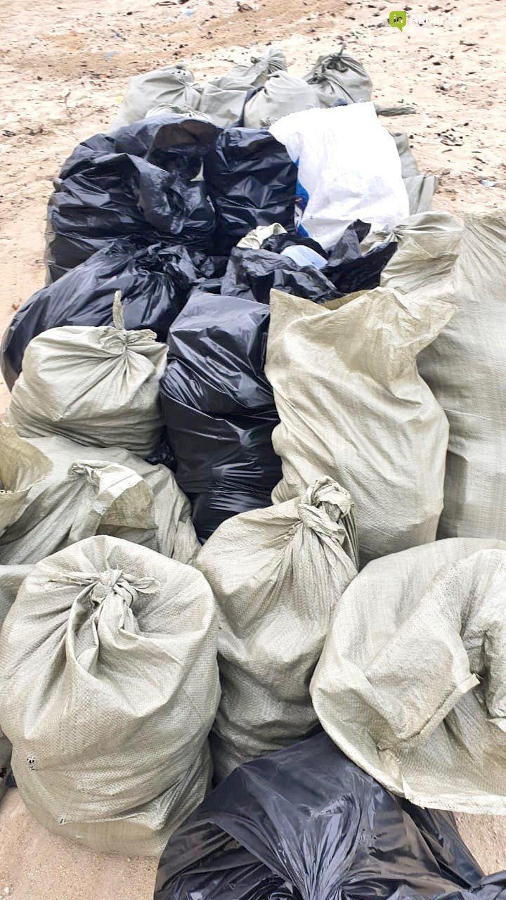 40 мешков мусора собрали молодые активисты на 43 километре, фото-2