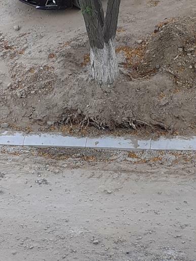Жителей 2 микрорайона Актау возмутило качество установки бордюров, фото-3