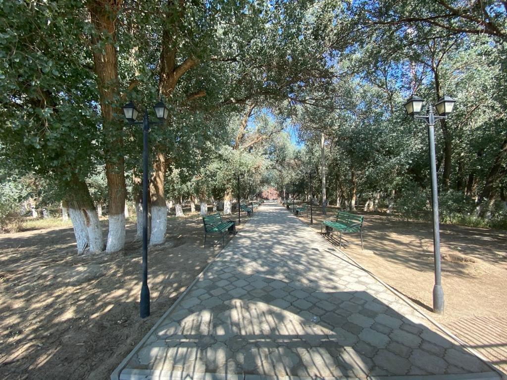Село Таучик озеленяют на сэкономленные бюджетные средства, фото-1