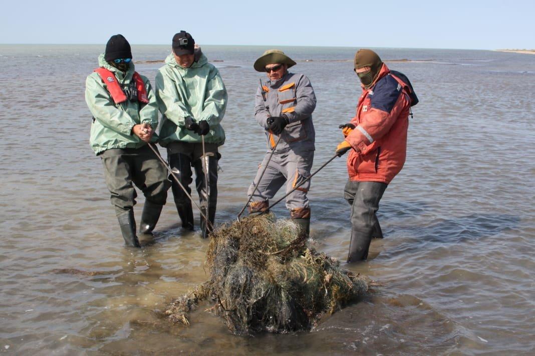 Более пяти тонн мусора и сетей собрали на Каспии во время экспедиции, фото-2