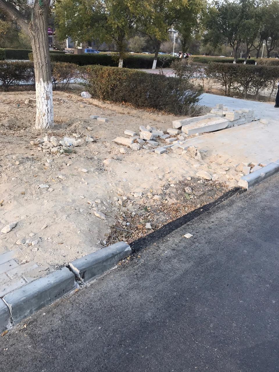 Просевшая бручастка в сквере Победы, Актау